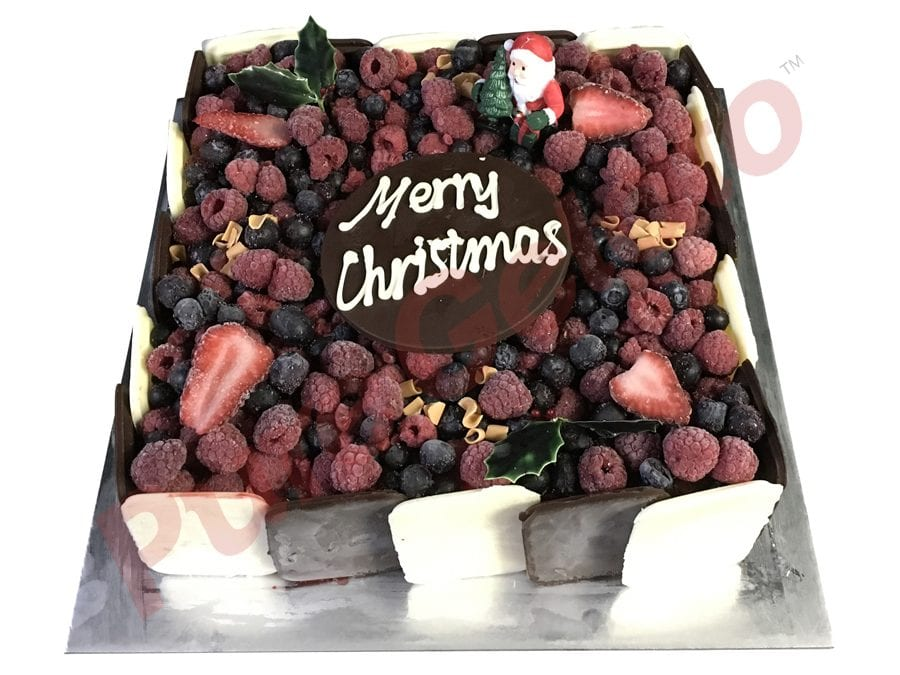 Christmas Cake Choc Berry Square With Holly+Santa