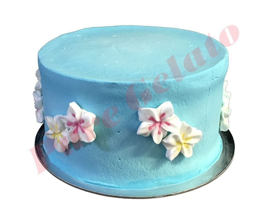 Smooth Baby Blue Cream Double Stack+Frangipanis