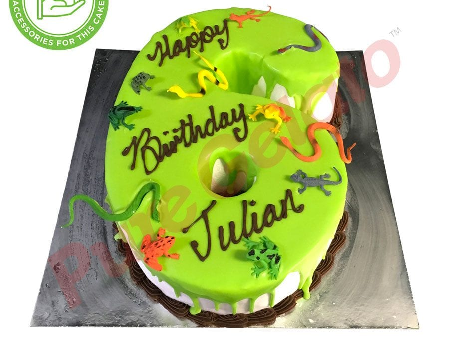 Numeral Cake 6 lime green Choc Drip Choc piping+customers accessories