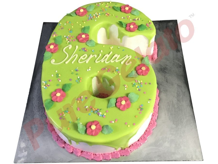 Numeral Cake 6 lime green Choc Drip pink piping+flowers+Sprinkles