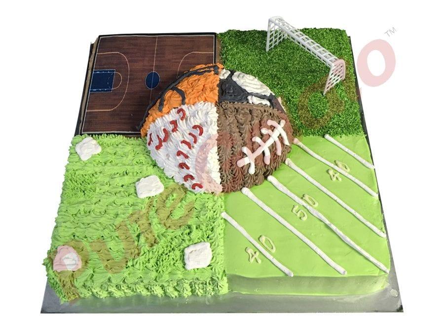 Sports-field-Cake-4-fields-plus-centre-ball