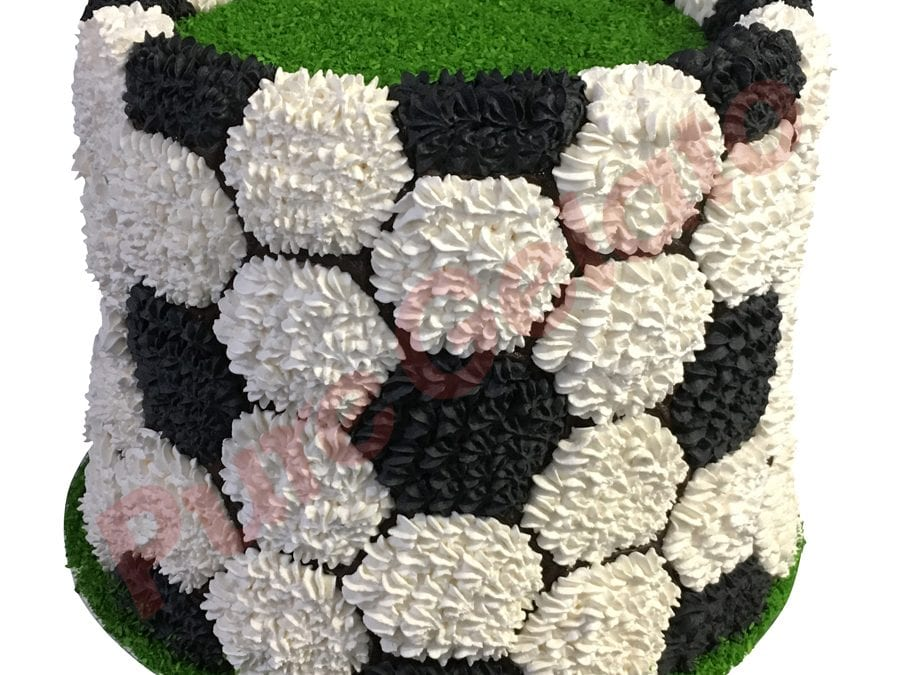 Triple Stack Cake piped cream soccer ball themed_